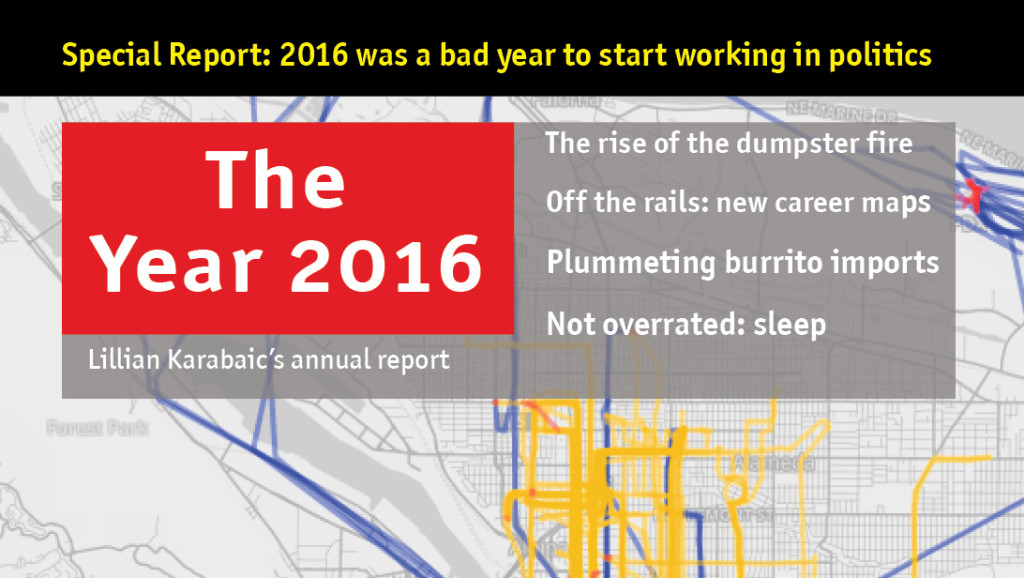 The year 2016: annual report