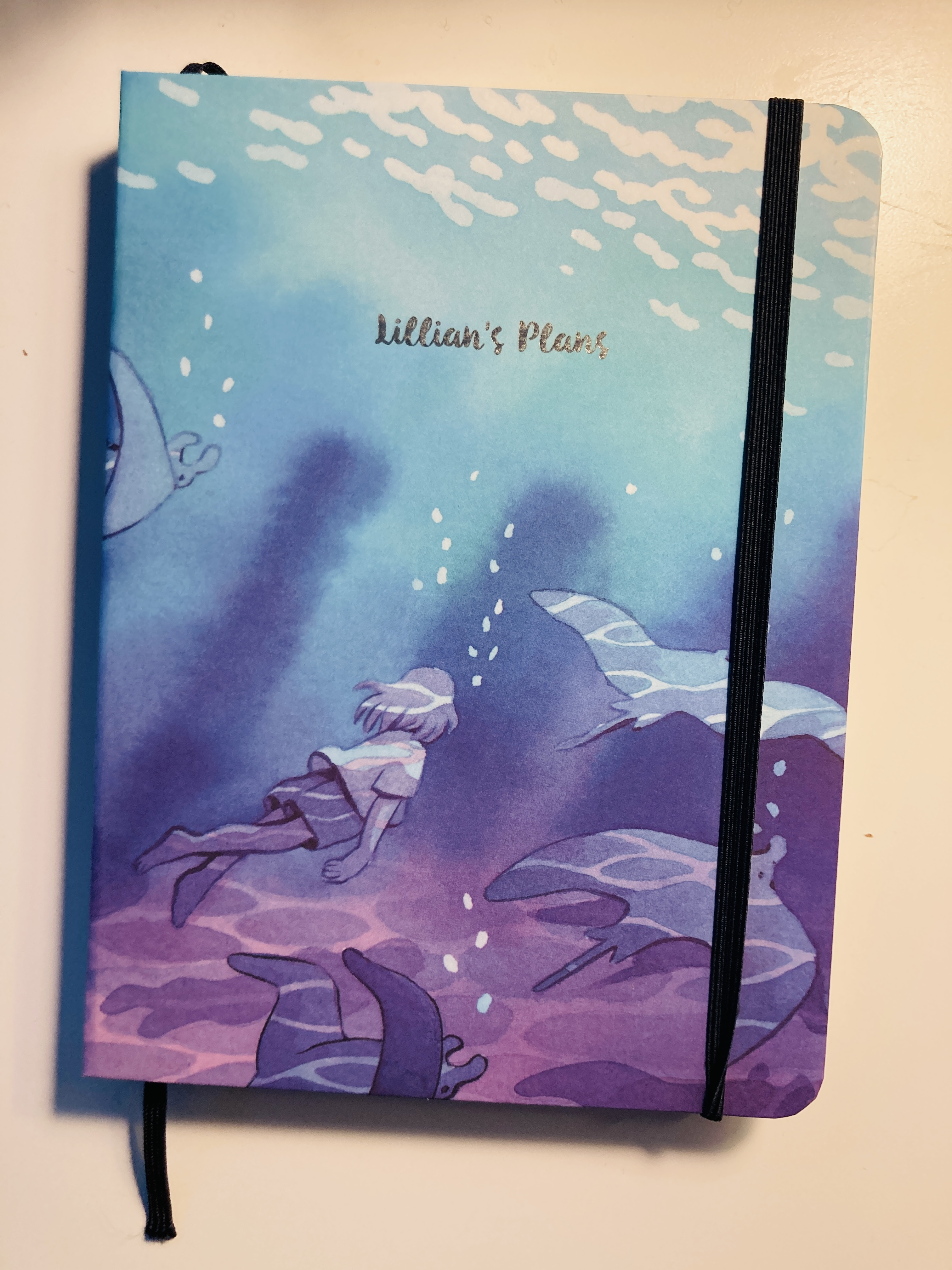"A notebook on a white background with a blue and green and purple cover with a girl swimming and the words ""Lillian's Plans"""