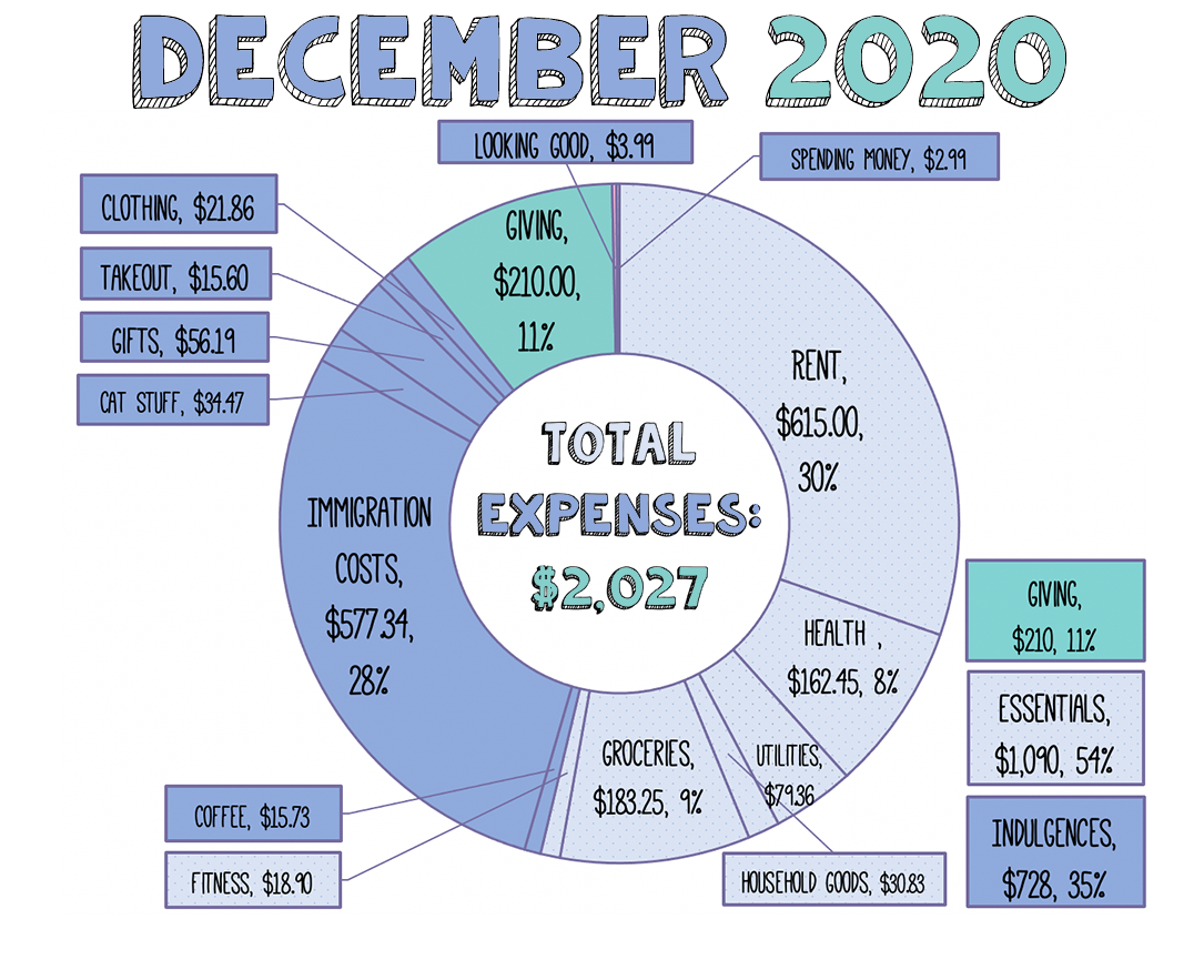 A donut chart showing total expenses for teh month of December 2020